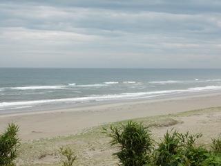 海はゴーゴー
