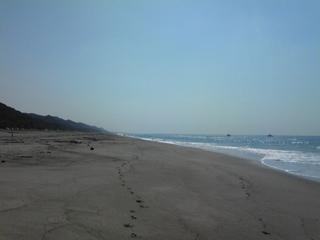 豊橋前浜小島海岸