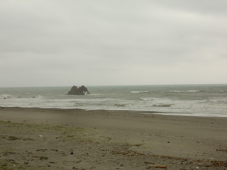 一日雨、東風