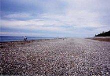 七里御浜の右手方向を撮影。