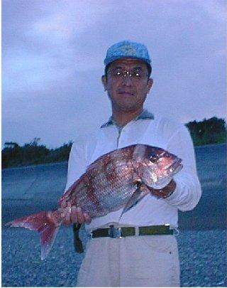 見事でっかい真鯛を釣り上げた、いるかさん。と、真鯛の写真。