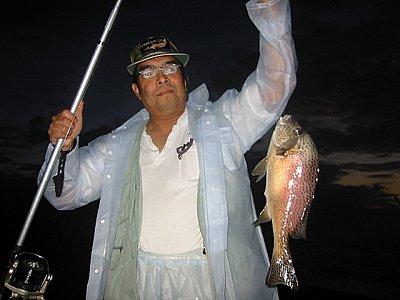 きんどんお見事!本命コロ鯛を釣り上げました。