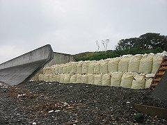 背後の防波堤防です。